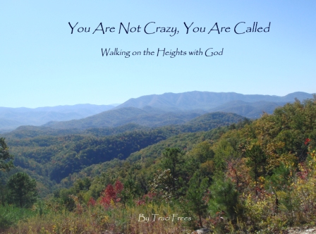 You are Not Crazy, You are Called eBook link