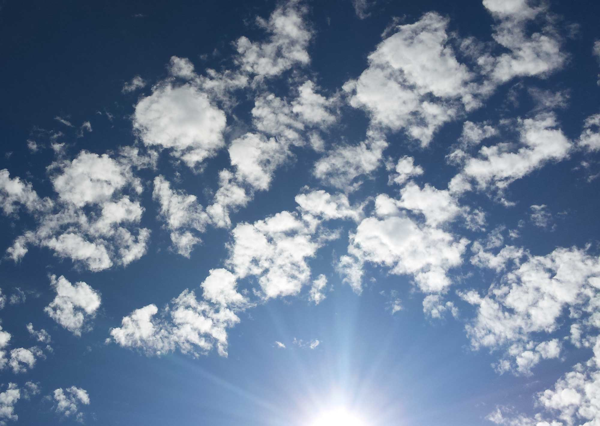 looking up to a blue sky with cotton ball white clouse surrounding the sun