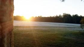 sunrise-frost